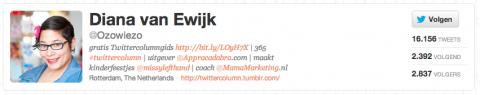 twitter, Diana van Ewijk, profiel, invullen, tip, mamamarketing