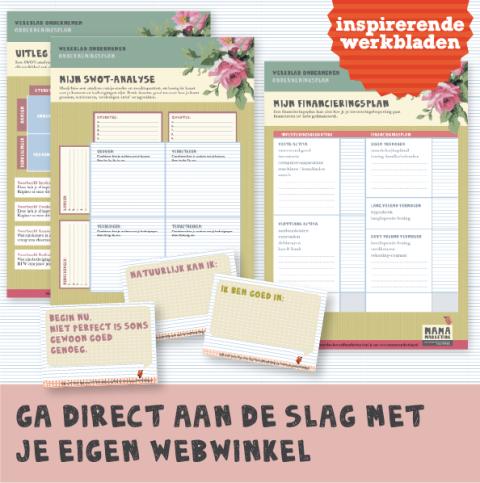 Werkboek Ondernemingsplannen Werkbladen