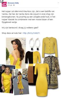voorbeeld-Facebook-DressesOnly-2