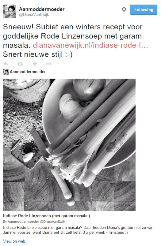 summary twitter card large image diana-van-ewijk